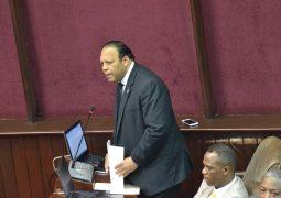 Diputados aprueban resolución declara prioridad Nacional rescate de Valle Nuevo