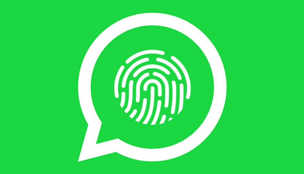WhatsApp te permitirá usar la huella dactilar para proteger los chats