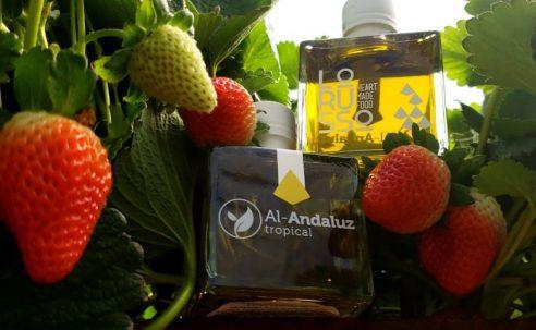 Empresa Al Andaluz Tropical se desvincula de investigación por lavado de activos