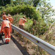 MOPC inicia trabajos de acondicionamiento carretera Casabito-Constanza