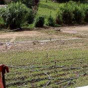 Evalúan daños causados por inundaciones en Constanza